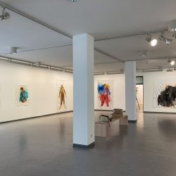 """Installationsfoto Ausstellung in Waldkraiburg: """"Im Fellanzug"""" 2020"""